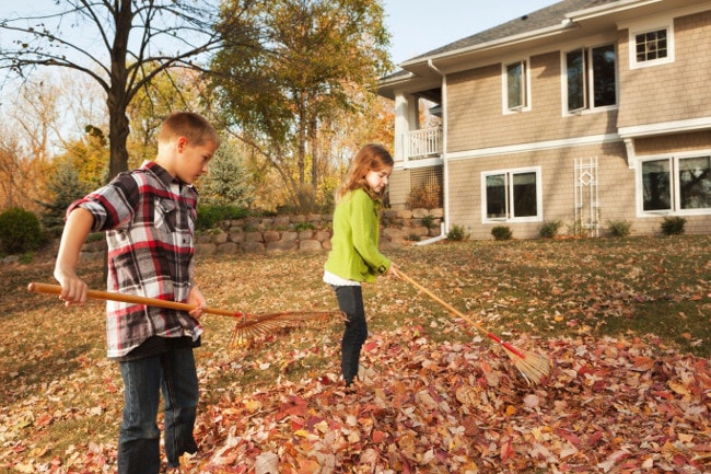 Brother and sister raking leaves together