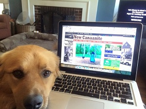 Marvin the dog helps with the transition to entrepreneurship
