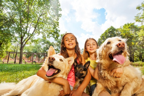 Two girls with three dogs