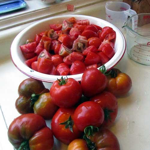Tomato sauce, step one