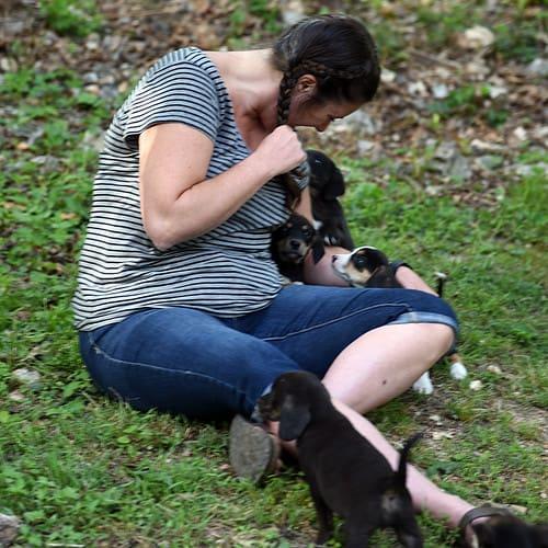 Kim meeting puppies