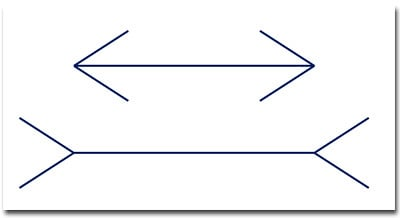 Which line is longest?